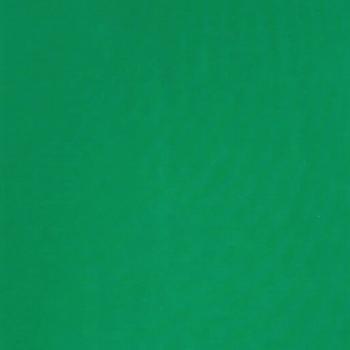 Bio-Jersey dunkelgrün
