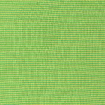 Ringelbündchen grün/limette